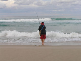 beach fishing for tailor
